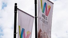 Wels Pulsiert - Flagge