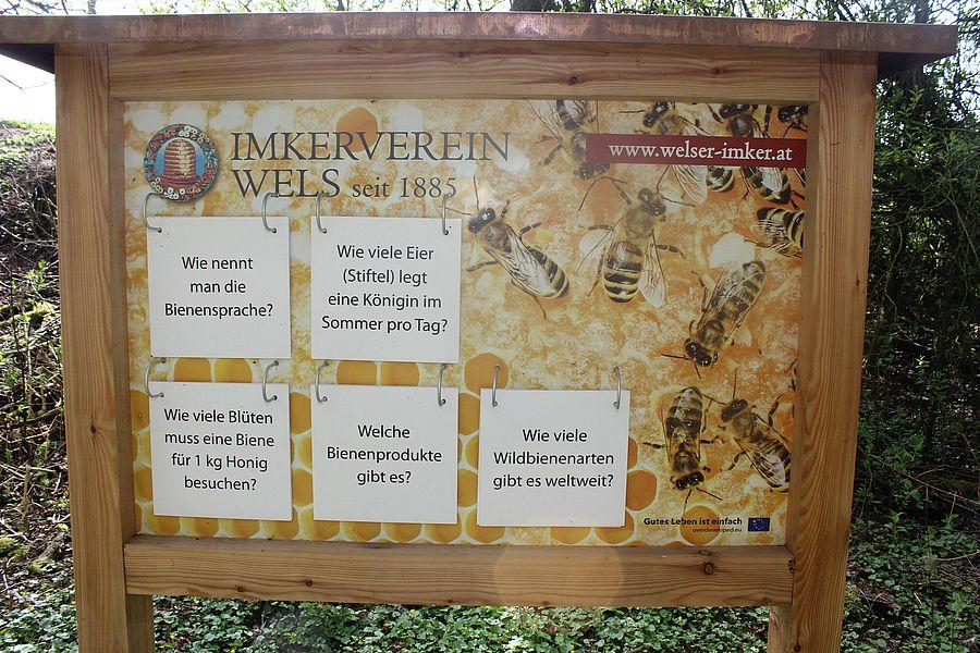 Bienenerlebnisweg - Imkerverein Wels