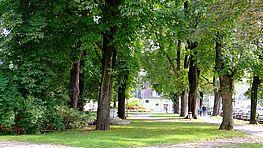 Pollheimer Park