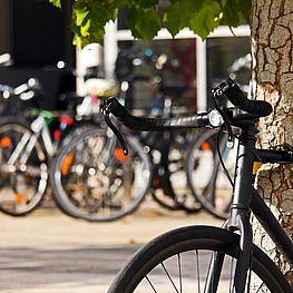 Ansicht von zahlreichen Fahrrädern