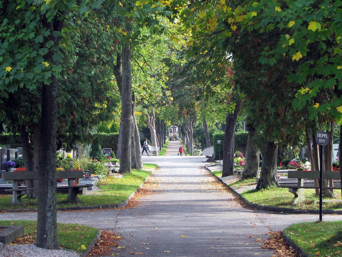 Friedhof der Stadt Wels